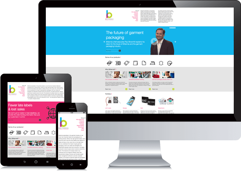 b2b-website-design-britannia-opt