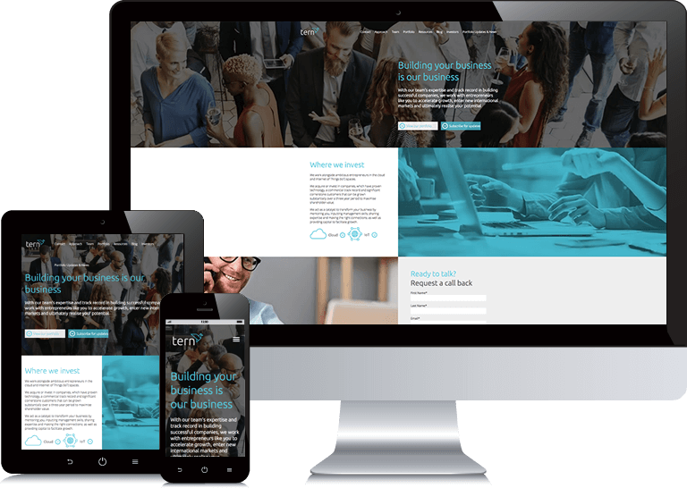 b2b-website-design-tern-opt