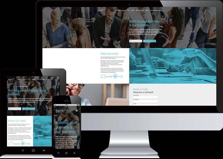 b2b-website-design-tern-opt