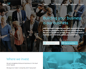 B2B Website Design for Tern PLC