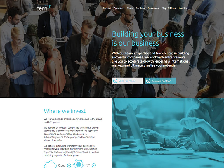 B2B website design for Teledata
