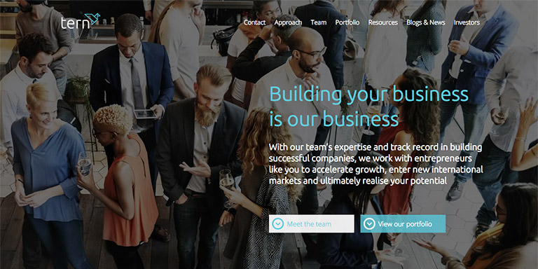 HubSpot COS site for Tern PLC